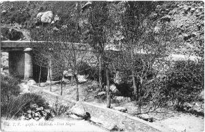 Font Negre - L'any 1925