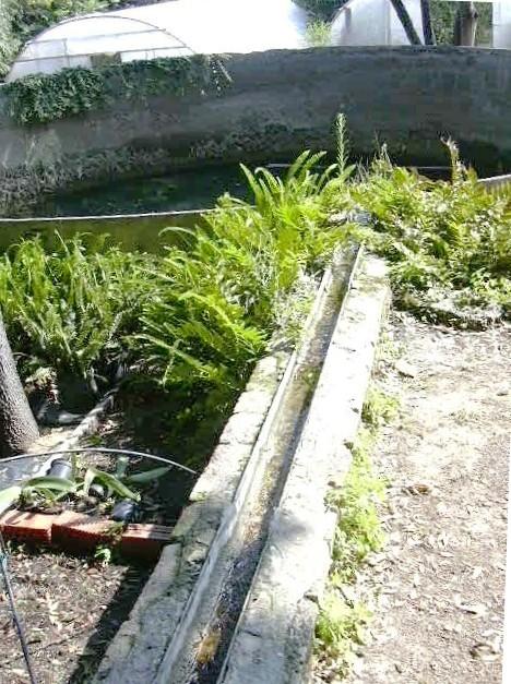 Canaló que porta l'aigua fins la bassa