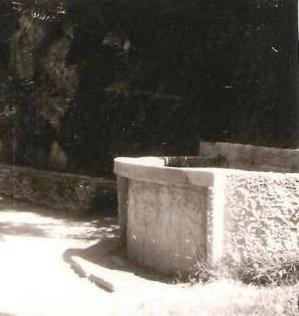 El Safareig