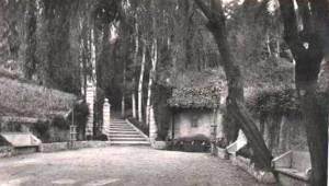 Font del LLedó - L'any 1954