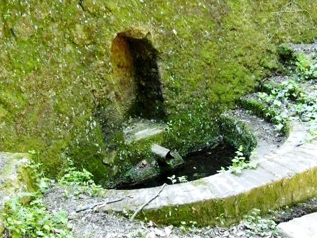 Can cat fonts naturals aigua muntanya i m s - Can font les franqueses ...