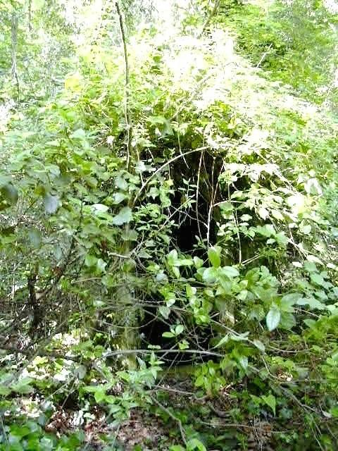 Mina de Can Cata prop del Torrent de la Font Vella