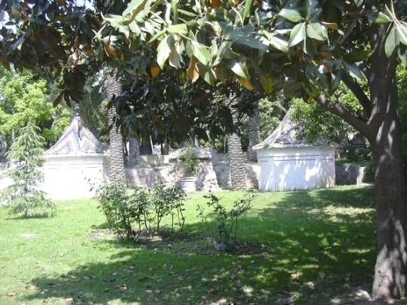 Vista 9