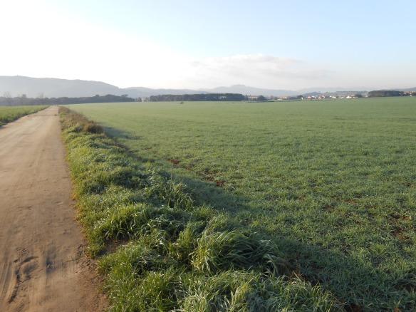Vista de l'Antic camp d'Aviació