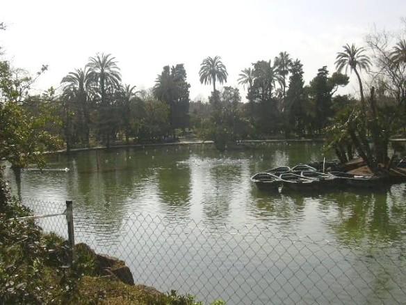Vista 11