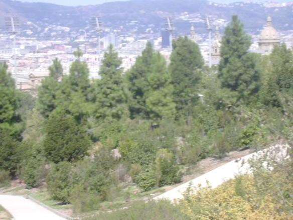 Vista 15