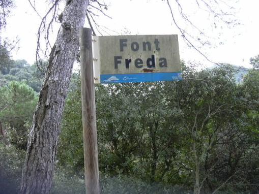 Cartell Ft Freda_01
