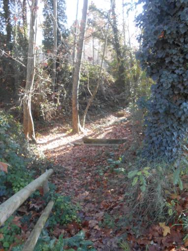 La font dels mil pins fonts naturals aigua muntanya i m s - Can font les franqueses ...