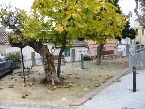 Ft carrer St. Miquel_01