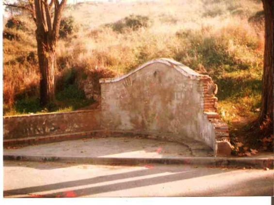 Font Eucaliptus-  any 1988
