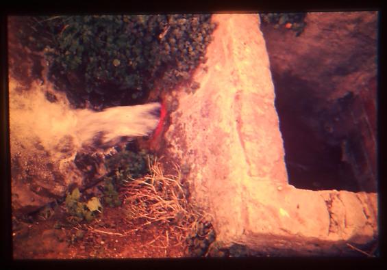 Aigua de la Font, portada als horts propers-Any 1986