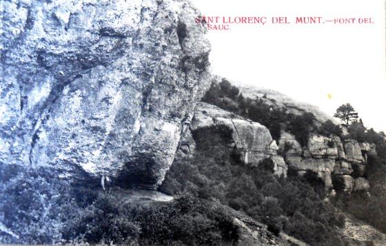 Any 1912