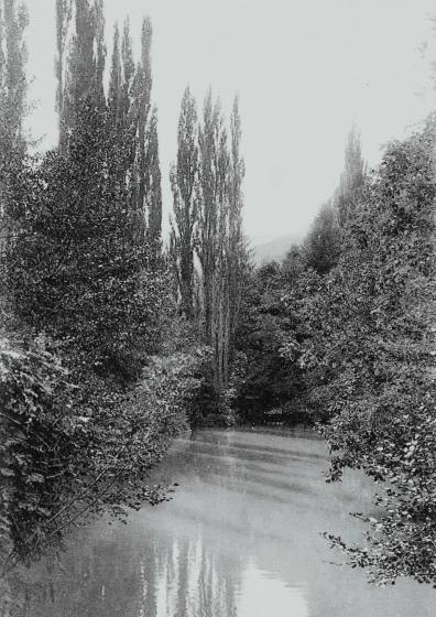 Ribes de Fresser - Llac d'Angelats_01