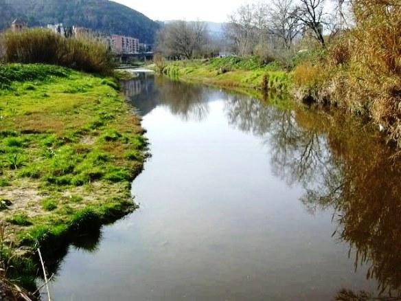 Vista riu