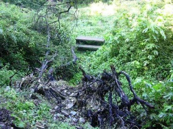 Vallvidrera fonts naturals aigua muntanya i m s - Can font les franqueses ...