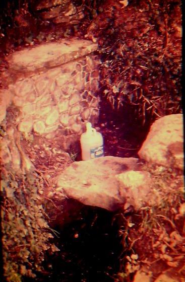 Any 1988 - de l'Arxiu Fotografic RASOLA