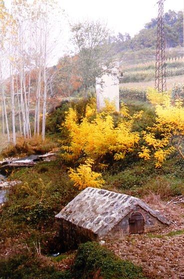 Antiga deu d'aigua que és portaba al poble de Sant Quirze de Besora