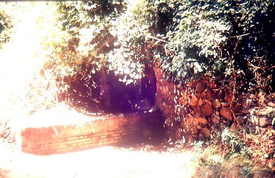 Fotografia any 1988 - Arxiu RASOLA