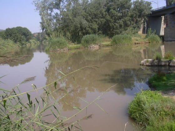 Aiguabarreig rius Cardener i Llobregat