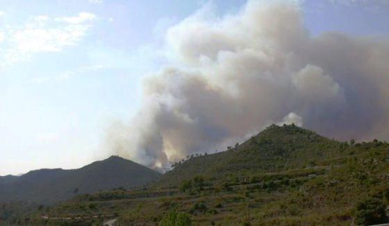 Incendi Forestal Castellbell - 5_01