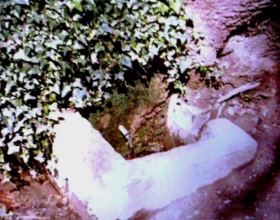Font d'en Cusí, Any 1994- Arxiu Rasola