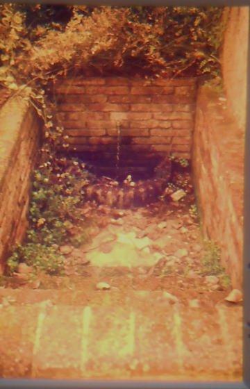 Font de la Rectoria, Any 1986- Arxiu Rasola