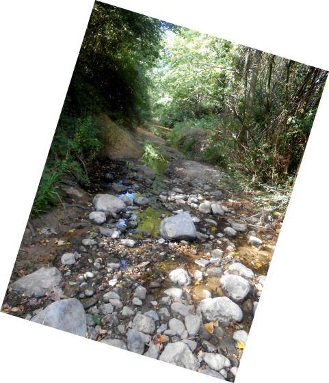 rius-sequera_01