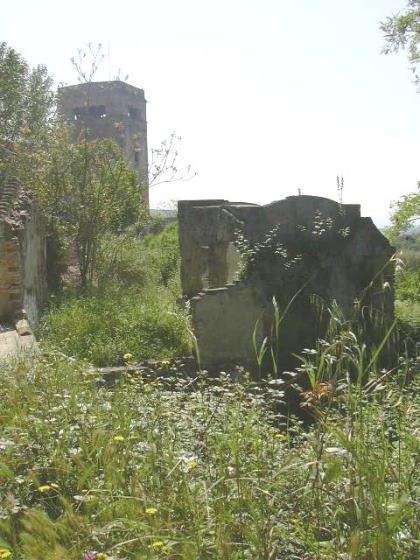 Bassa de la Font del Lleó - Any 2006 - Arxiu Rasola