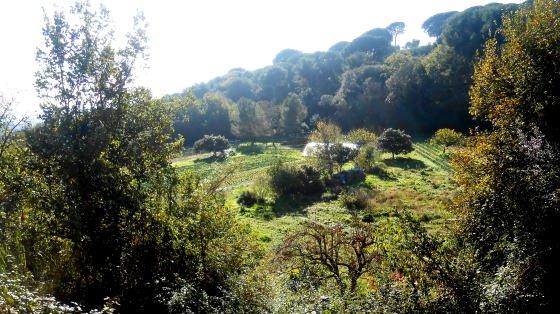 Antics Horts del Monestir