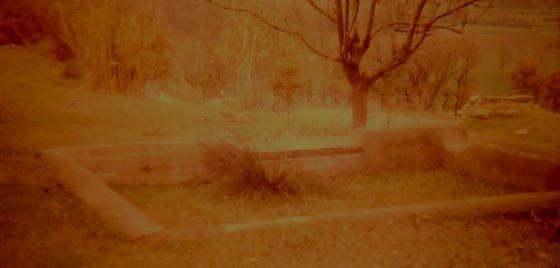 Any 1989 - Arxiu : Rasola