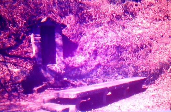 Any 1988 - Arxiu Rasola