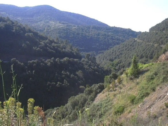 vista-de-la-vall