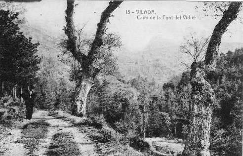 Camí de la Font del Vidrier- A principis del segle passat