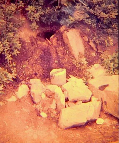 Gatell fonts naturals aigua muntanya i m s - Can font les franqueses ...